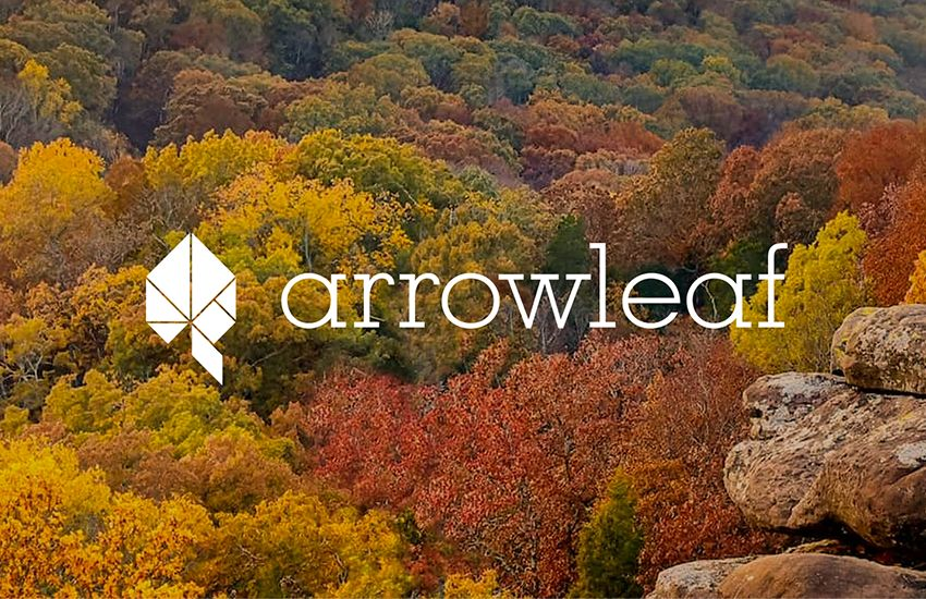 aerial view of fall colored trees with Arrowleaf on top