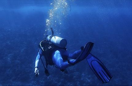 scuba diver above coral on ocean floor